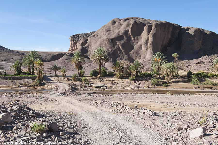 Fint Oasis, Morocco