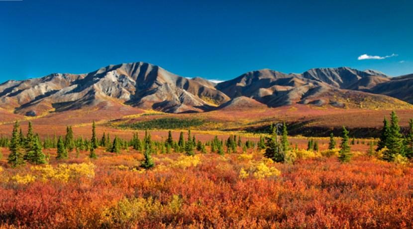 Knechtreisen-Kanada-Yukon