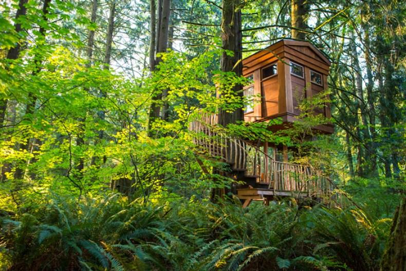 Treehouse-Point-USA