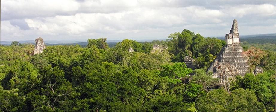 Tikal-Nationalpark-Guatemala