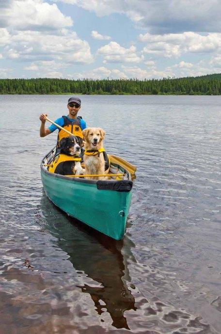 Mit Hunden Reisen