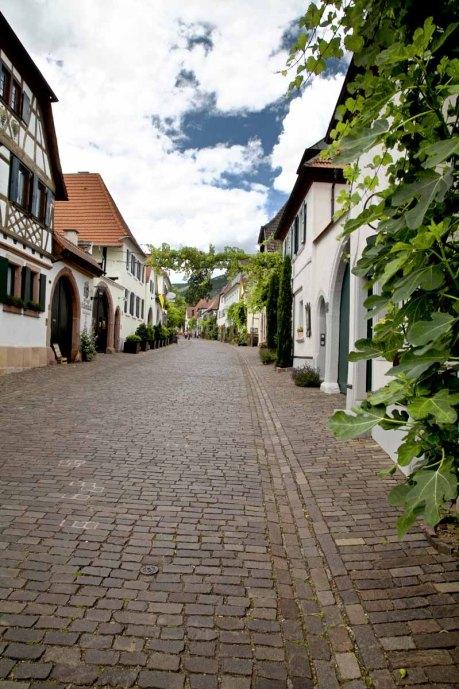 Deutsche Weinstrasse Theresienstrasse Rhodt_historische Häuser Pflasterstein