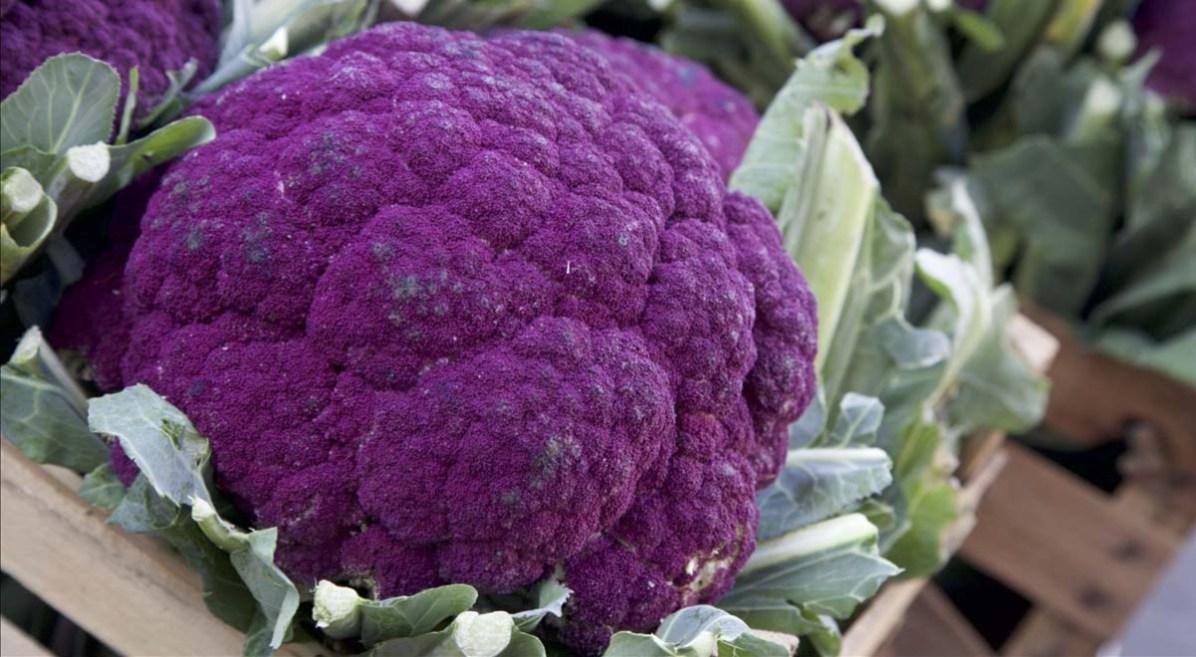 Catania-Sizilien-Broccoli