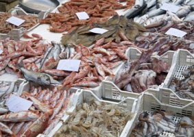 Catania-Sizilien-Fischmarkt-1