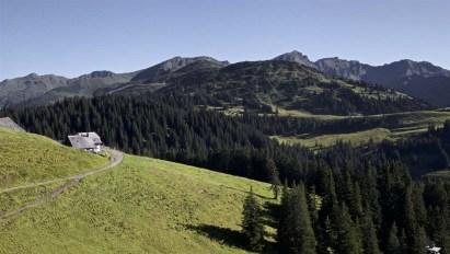Die Alp liegt idyllisch