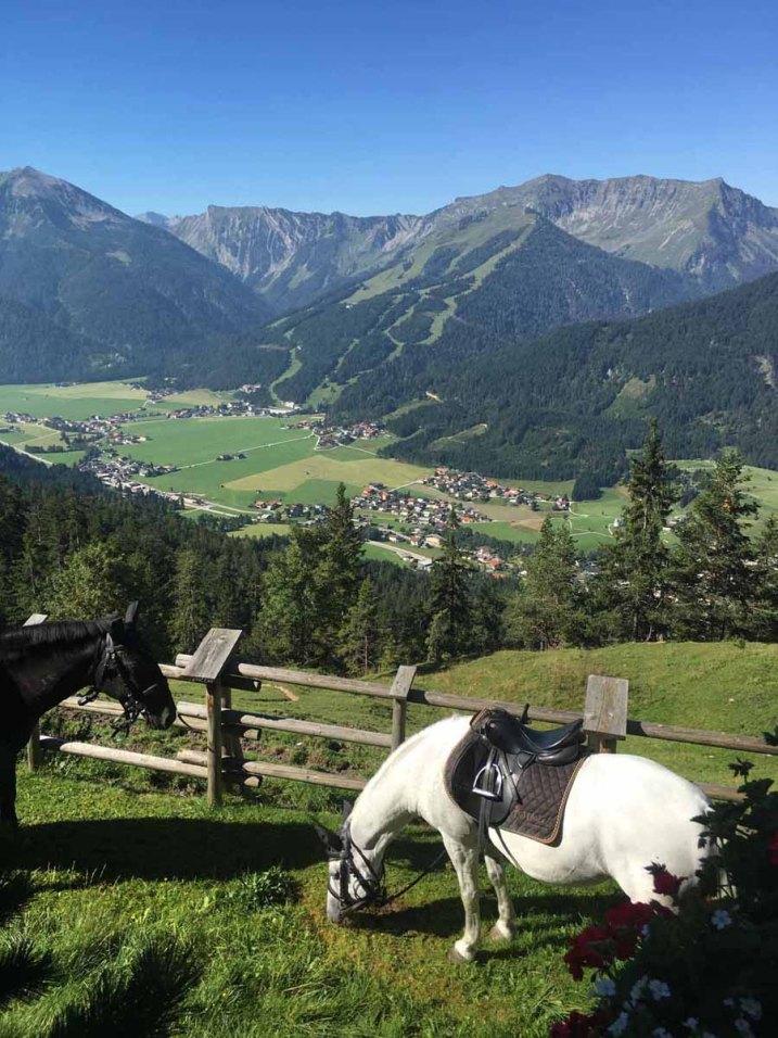 achenkirch_zoehrerarlm_ausblick_pferde