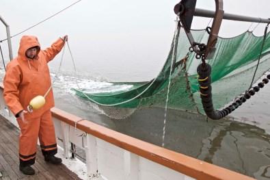 Die Nordsee Krabbenfischerei 10