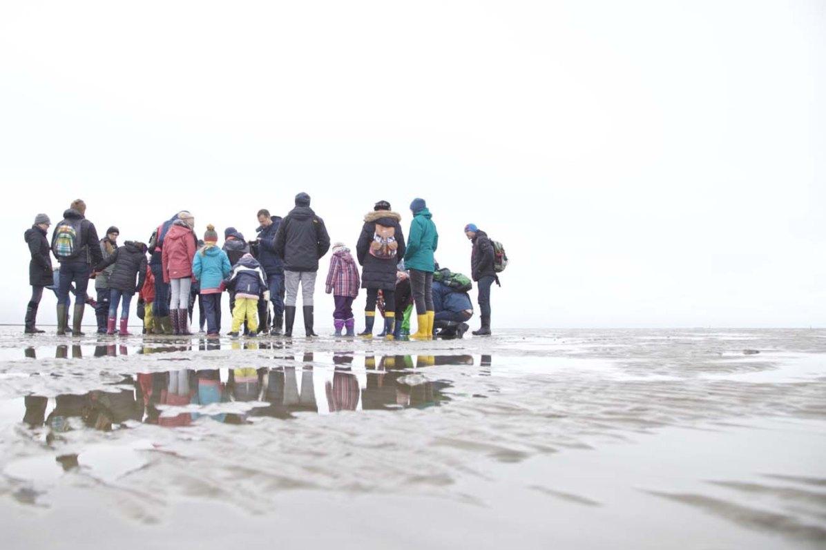 Die Nordsee Kueste Wattwandern 09