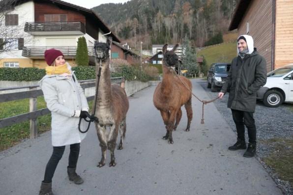Bodensee Winter Reisetipps 28