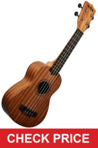 Official Kala Learn to Play Ukulele