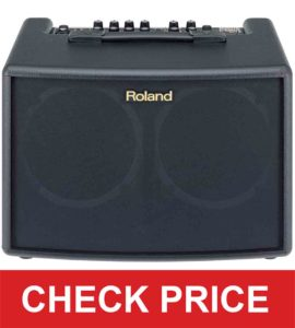 Roland 4 String AC-60 Acoustic Guitar Amp