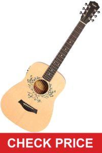 Taylor Swift Signature Guitar