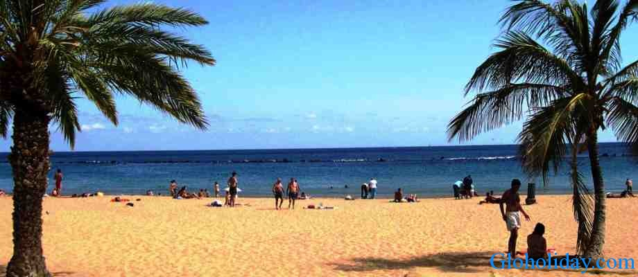 Main Features Of Tenerife Island Is Mild Climate And Bird S Park