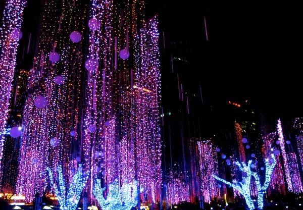 Ayala Triangle Gardens  at christmas
