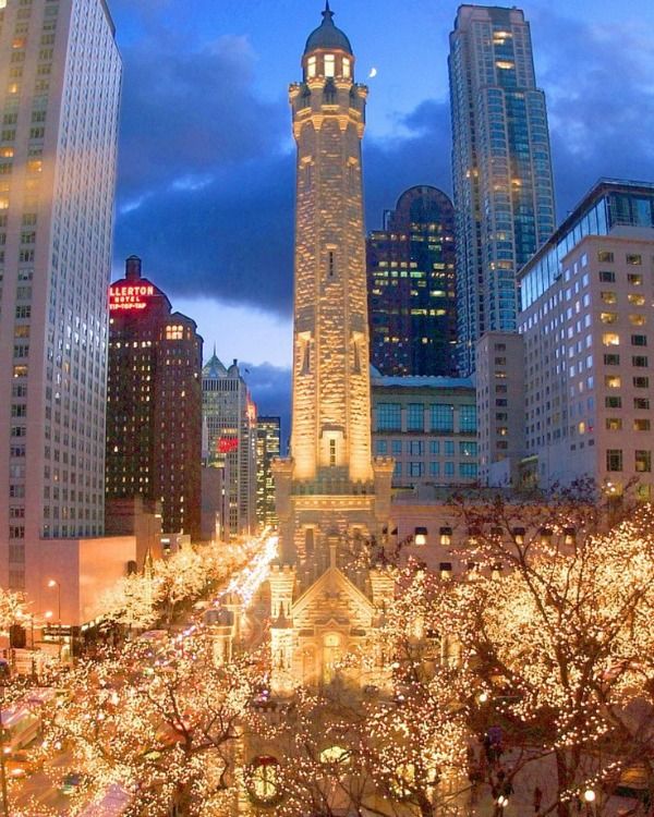magnificent mile christmas
