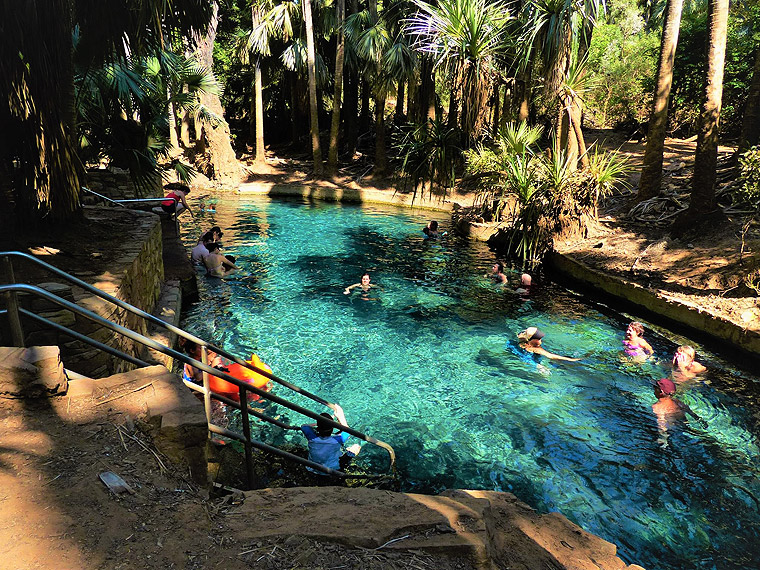 Visit Central Australia - The Mataranka Hot Springs, located on Mataranka Homestead