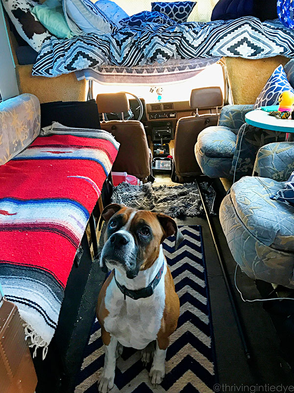 thrivingintiedye.com suzy travel blog road trip in RV