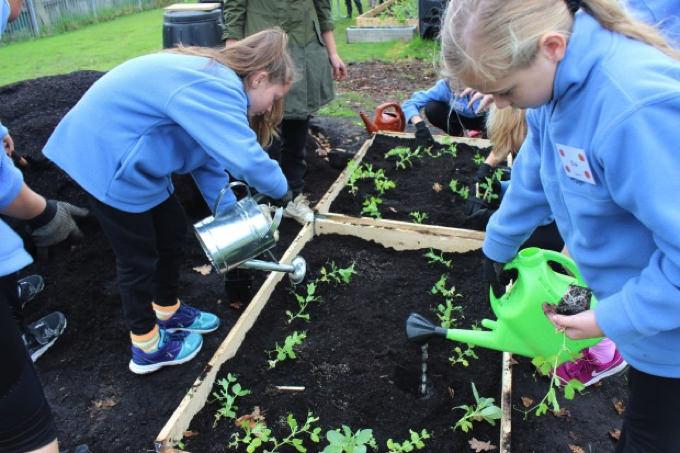 小学校で学ぶ食育…ニュージーランドの教育現場