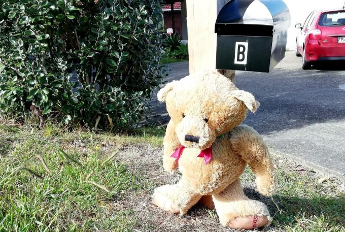 ニュージーランドのテディーベアハント NT Bear Huntの様子
