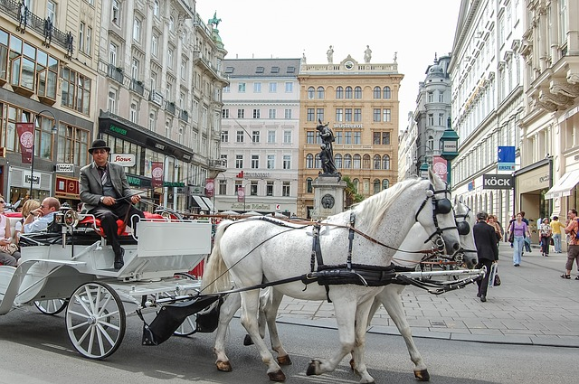 Horse and cart in Vienna