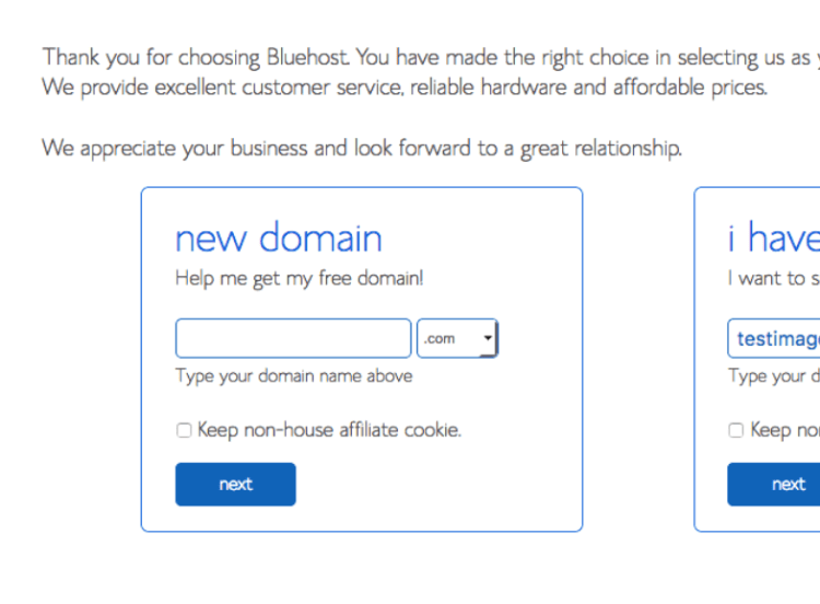 Type your domain name. On (How to start a WordPress blog)