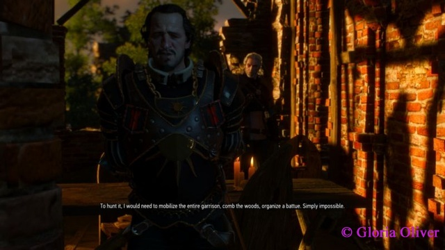 Witcher 3 - Nilfgaardian captain