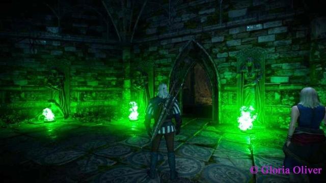 Witcher 3 - magic chamber