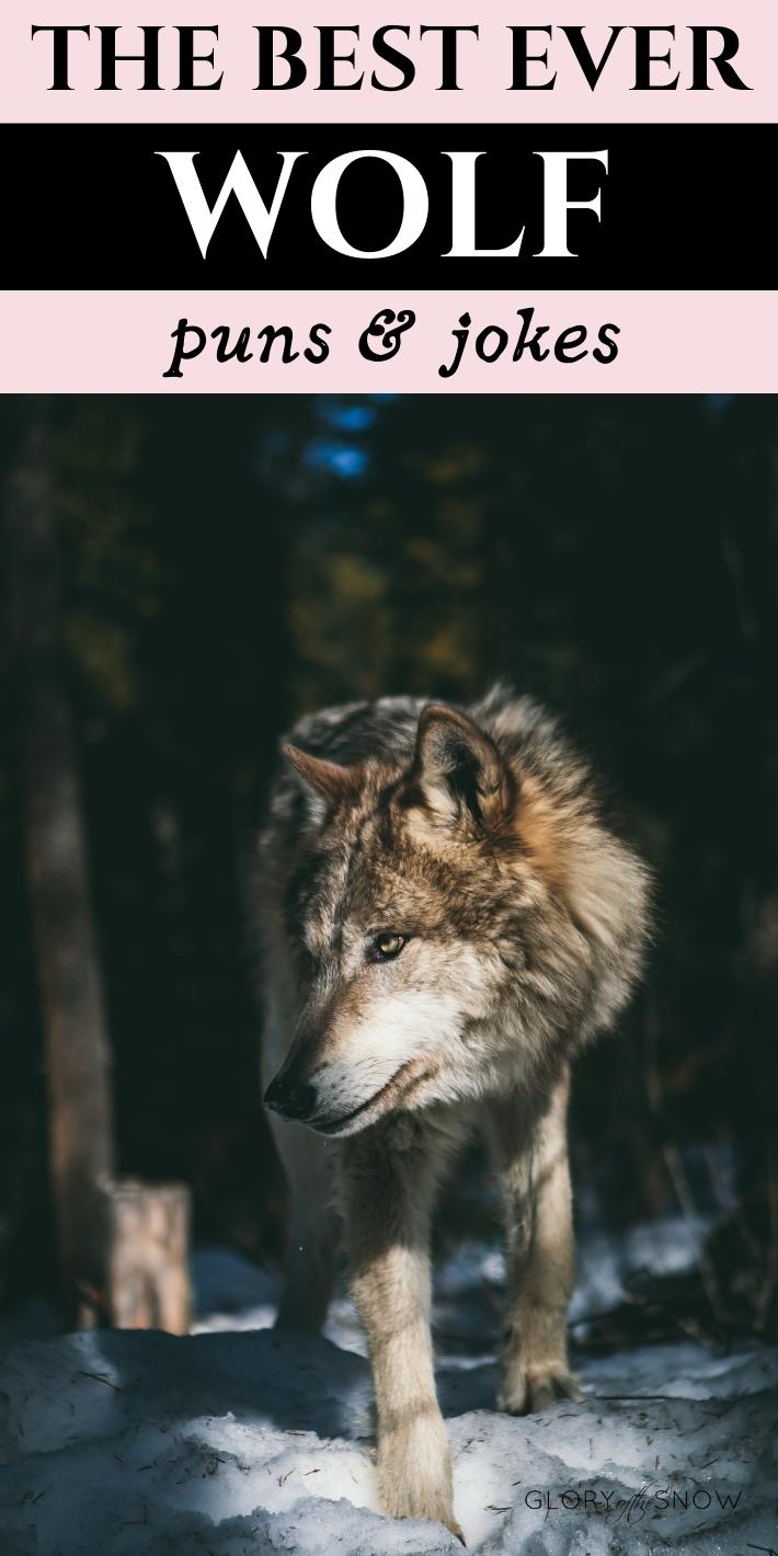 Wolf Puns And Wolf Jokes