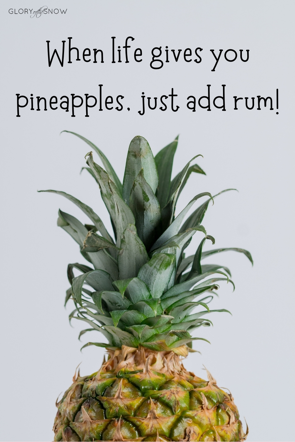 The Best Pineapple Puns, Jokes And Quotes