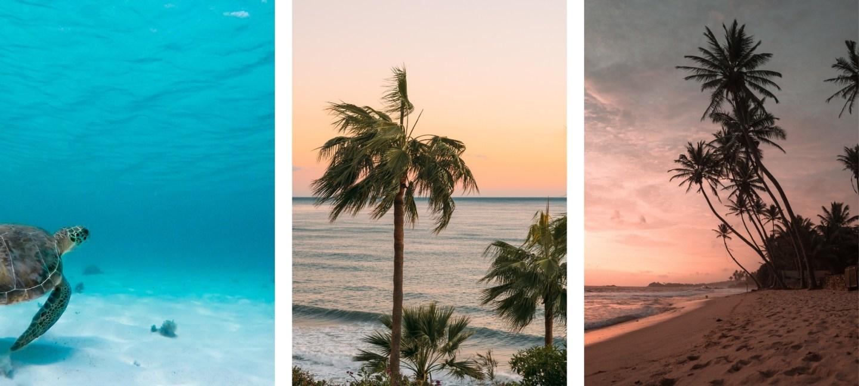 ocean background wallpapers