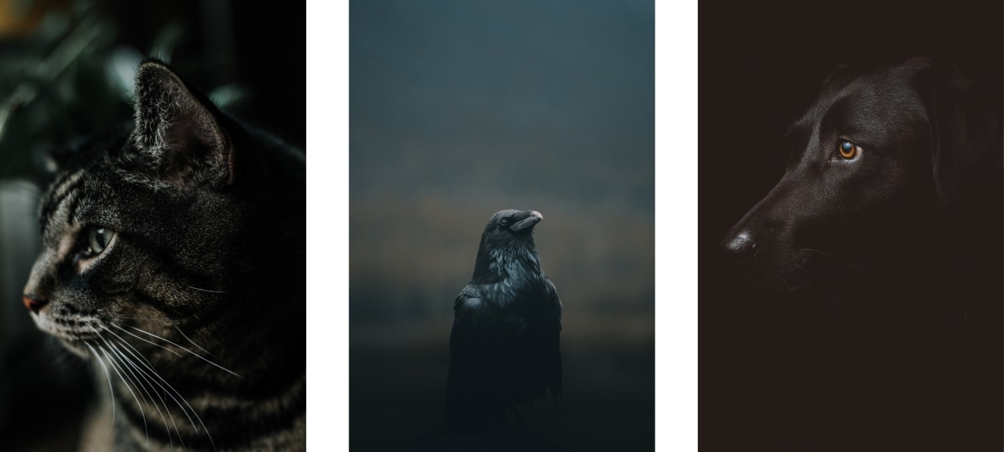 dark wallpapers for iPhone