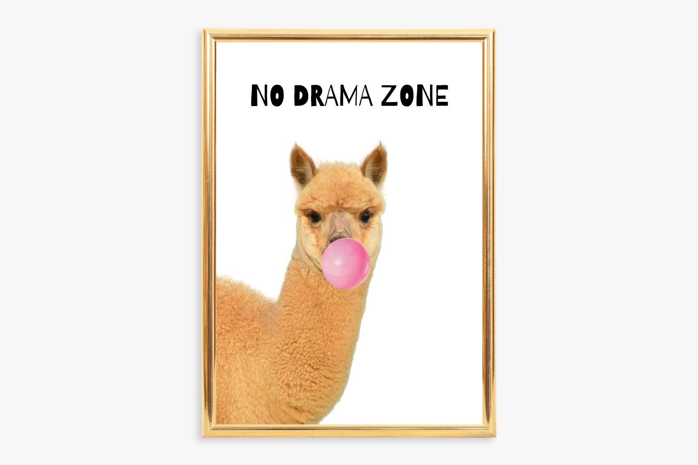 Teenage Bedroom Wall Art: No Drama Zone