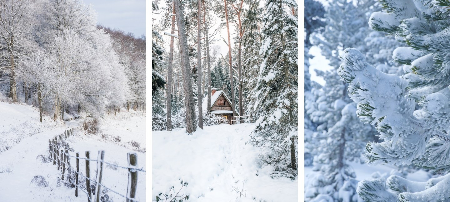Free HD Winter Landscape Wallpaper Backgrounds For iPhone