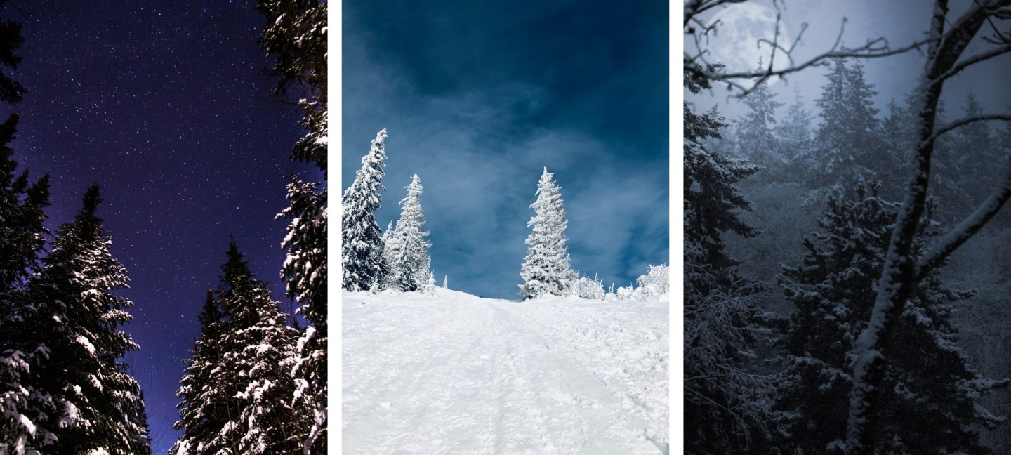 Free HD Forest Winter Wallpaper Backgrounds For iPhone