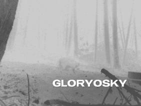 Gloryosky Raccoon Generic Mast (500x375)
