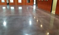 20141128_164920 Stained Polished Concrete Showroom Floor Stained Polished Concrete Showroom Floor 20141128 164920