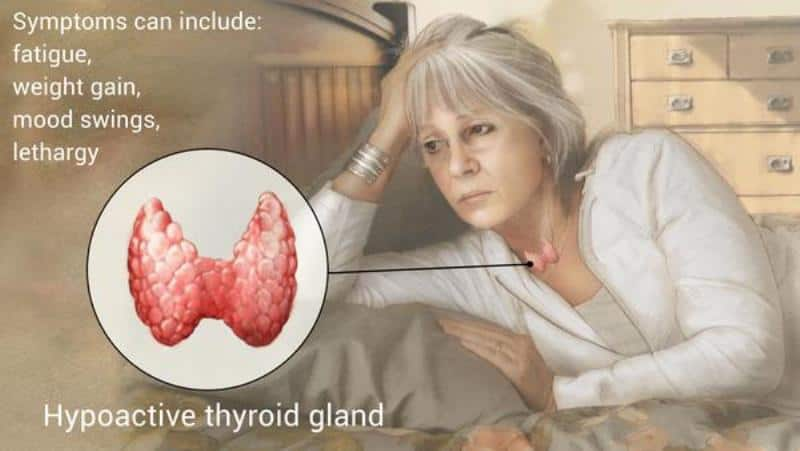 The TRUTH about Hypothyroidism