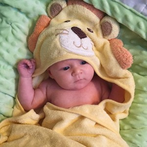baby in lion blanket