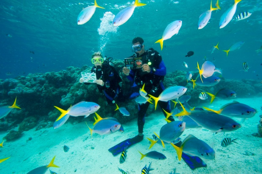 A couple scuba dives with fish in Honduras.