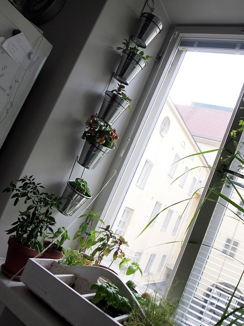 small space garden vertical