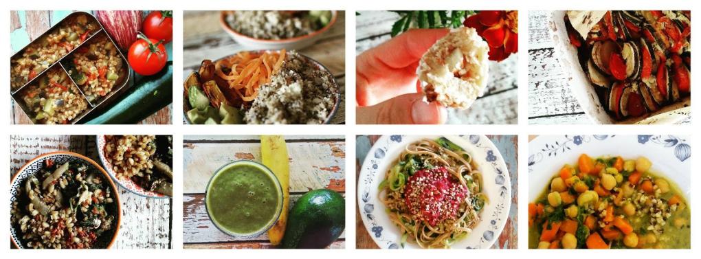 Titelbild mit Fotos von unterschiedlichen Gerichten