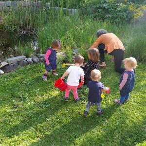 Foto Kinder im Garten