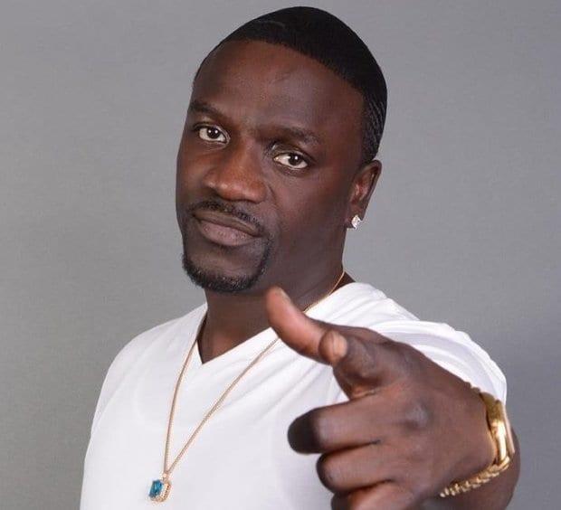 Akon net worth 2020