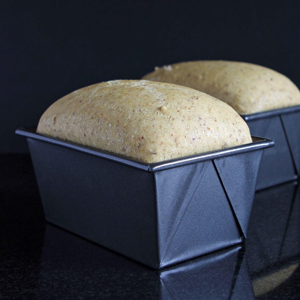 gluten-free-bread-recipe-proving