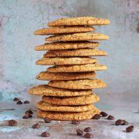 gluten-free-chocolaetr-chip-cookies