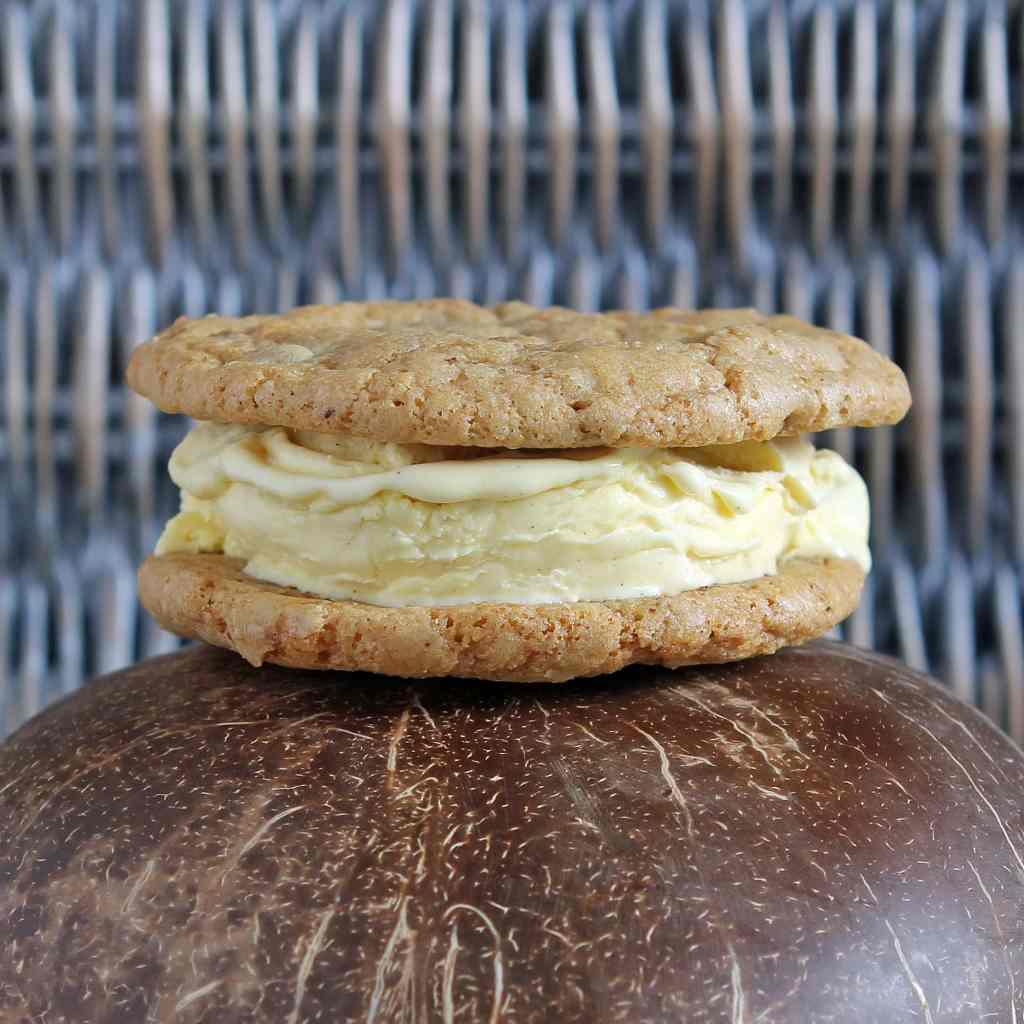 gluten-free-ice-cream-sandwich
