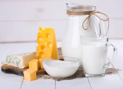 dairy_cheese_milk