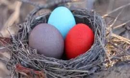 Kool Aid Easter Eggs1