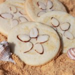 Sand Dollar Cookie1