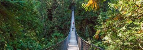 lynn-canyon-park-suspension-bridge